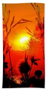 Thistles In The Sunset Beach Towel