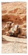 Three Camels Beach Towel