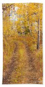 Trail In Golden Aspen Forest Beach Towel