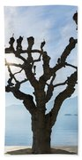Tree And Bench Beach Towel