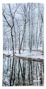 Tree Line Reflections In Lake During Winter Snow Storm Beach Towel