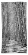 Trees Along A Road, Log Cabin Gold Beach Towel