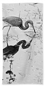 Tri-colored Meal Bw Beach Towel
