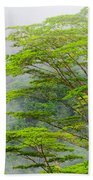 Tropical Forest, Seychelles Beach Towel