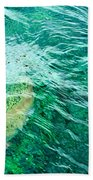 Catching Flies Beach Towel