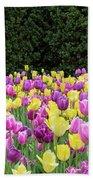 Tulip Flowers In A Garden, Chicago Beach Sheet