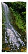Twin Falls Creek Mount Rainier Beach Towel