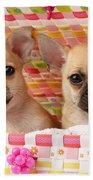 Two Chihuahuas Beach Towel by Greg Cuddiford