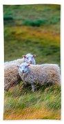 Two Sheep Beach Towel