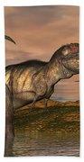 Tyrannosaurus Rex Dinosaurs Beach Towel