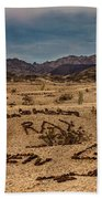 Valley Of The Names Beach Towel by Robert Bales