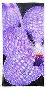 Vanda Orchid Beach Towel