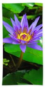 Water Lily 20 Beach Towel