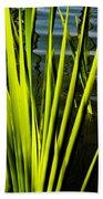 Water Reeds Beach Towel