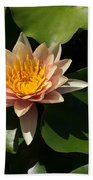 Exotic Colors - A Soft Coral Waterlily Beach Towel