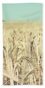 Wheat Crop Beach Towel