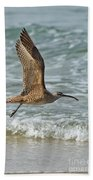 Whimbrel In Flight Beach Towel
