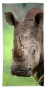 White Rhinoceros Beach Towel by Johan Swanepoel