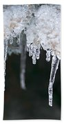 Winter Branches In Ice Beach Towel