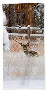 Winter Doe Beach Towel
