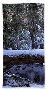 Winter Forest Stream Beach Towel