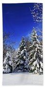 Winter Forest Under Snow Beach Towel