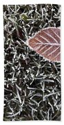 Winter With Frosted Leaf On Frozen Grass Beach Towel