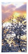 Wintry Sunset Beach Towel by Will Borden