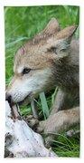 Wolf Pup Beach Towel