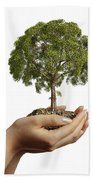 Womans Hands Holding Soil With A Tree Beach Towel