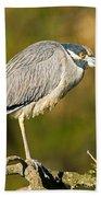 Yellow Crowned Night Heron Beach Towel