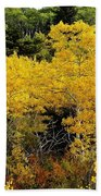 Yellow Trees  Beach Towel