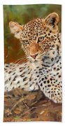 Young Leopard Beach Towel