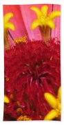 Zinnia Named Swizzle Scarlet And Yellow Beach Towel