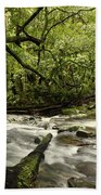 Jungle Stream Beach Towel