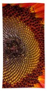 Sunflower From The Color Fashion Mix Beach Towel