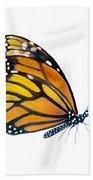 103 Perched Monarch Butterfly Beach Sheet