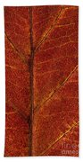 Dogwood Leaf Backlit Beach Towel