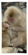 Snow Monkeys Beach Towel