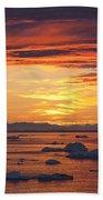 110307p086 Beach Towel