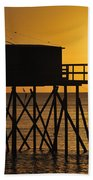 110922p030 Beach Towel