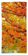 Fall Explosion Of Color Beach Towel