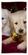 Festive Puppies Beach Towel by Angel  Tarantella