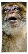 Monkey Beach Towel