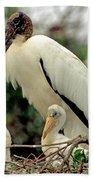 Wood Storks Beach Towel