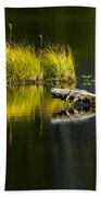 131005b-029 Forest Pond 2 Beach Towel