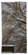 140303a-13 Winter Color Beach Towel