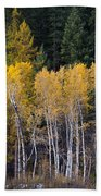 Guardians Of Trestle Creek  -  141102a-138 Beach Towel
