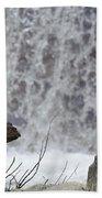 Snow Monkeys Beach Towel