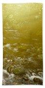 Forest Light Beach Towel